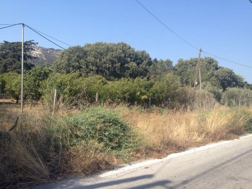 FARM LAND for Sale - COMUNE PETALOUDES